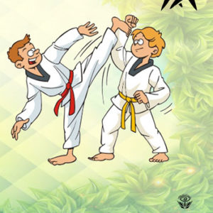 کتاب آموزش ورزشهای رزمی برای نوجوانان