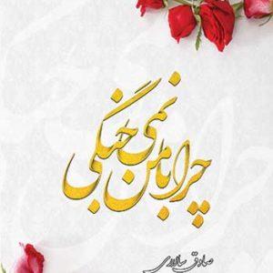 جلد کتاب چرا با من نمی جنگی نوشته صادق سالاری