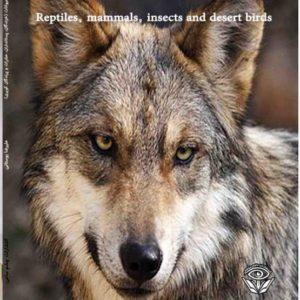 پشت جلد کتاب دایره المعارف حیوانات: خزندگان،پستانداران،حشرات،پرندگان کویری