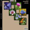 گیاهان دارویی ونباتات شفا بخش
