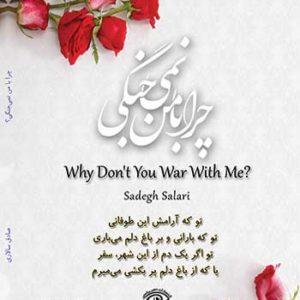 پشت جلد کتاب چرا با من نمی جنگی نوشته صادق سالاری